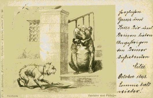 hund-austria-1898-01-xc1