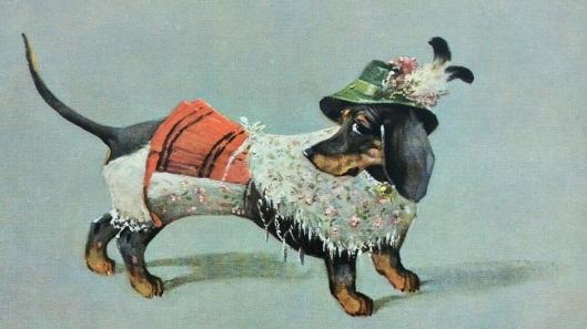 hund-austria-Dackel-Graz-01-x1.jpg